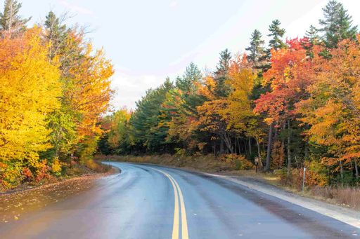 Top Destinations to See Fall Foliage